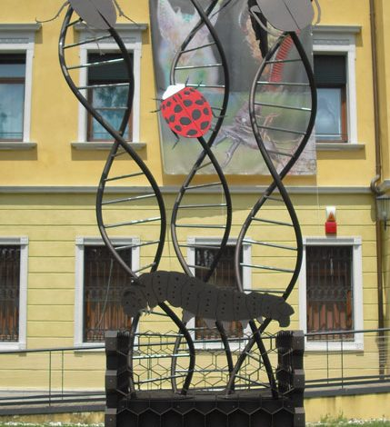 Curvatura tubi Torino